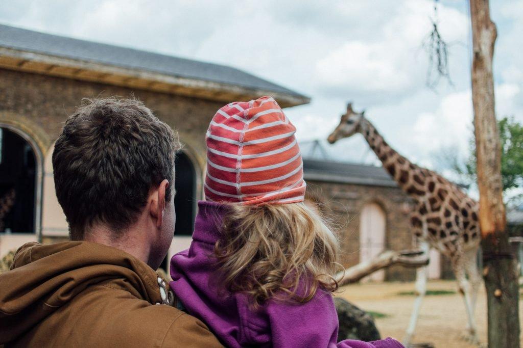 Family watching giraffes London Zoo