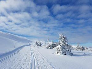 Snow landscape with ski slopes in Scandinavia