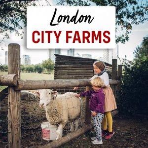 London City Farm