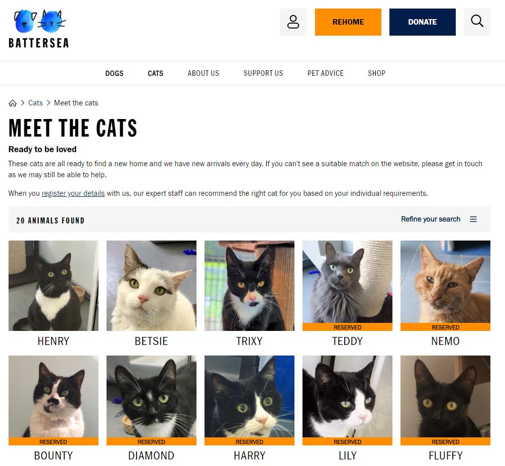 screenshot of website to adopt cats
