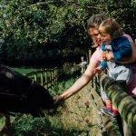 Review of Mudchute Farm