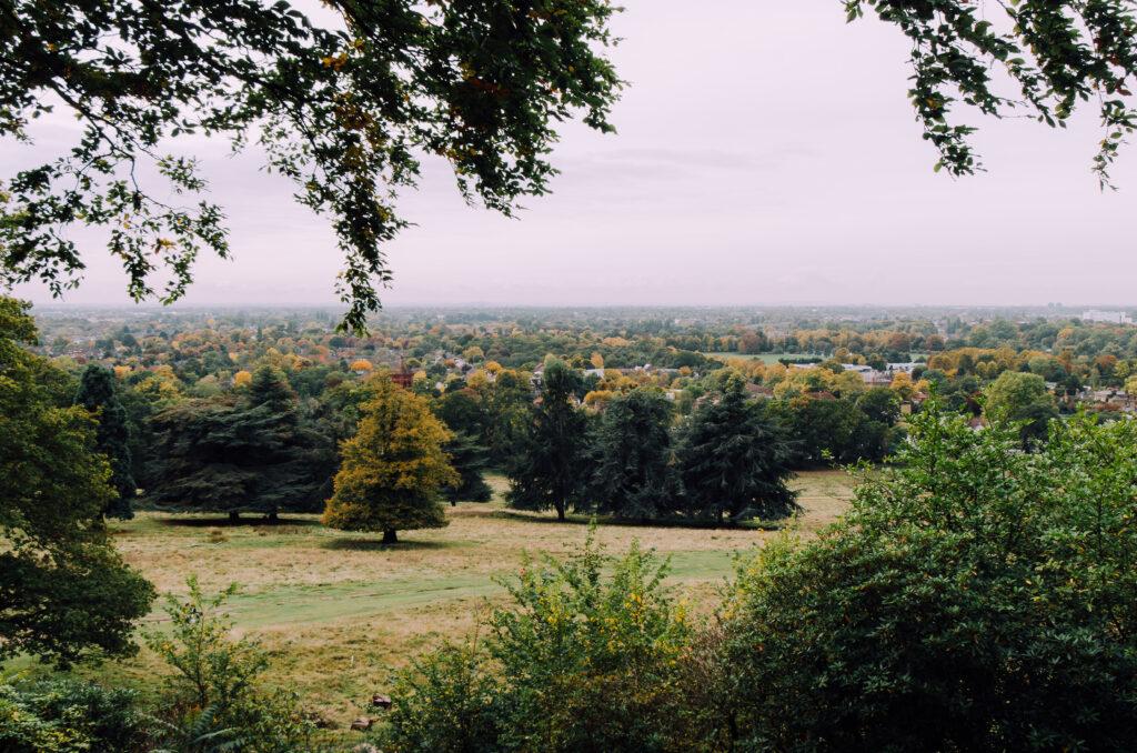 King Henry's Mound View towards Twickenham