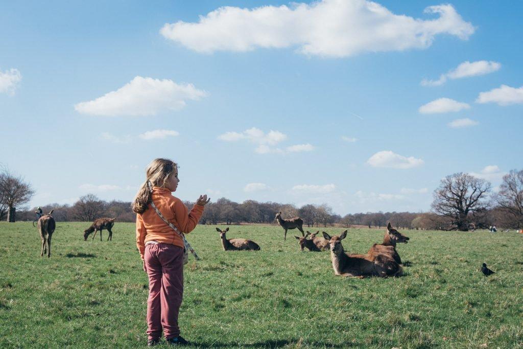girl next to deer in richmond park