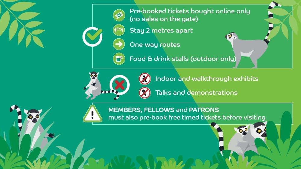 london zoo reopening