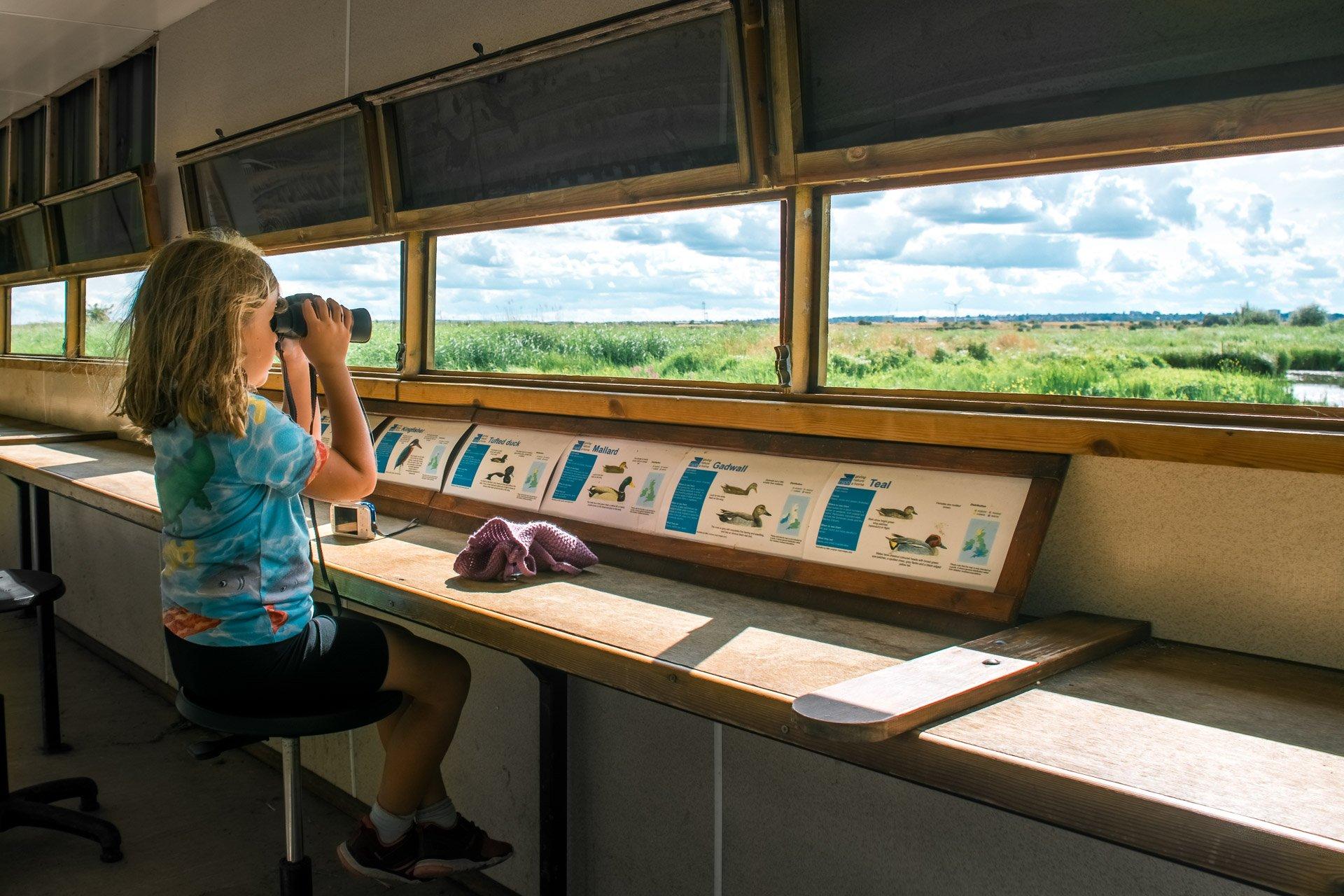 girl sitting in a nature hide watching birds through binoculars